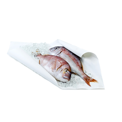 Papier enduit thermoscellable poisson